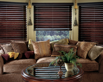 Gator Blinds offers window treatments, blinds, window shades, window coverings, wood blinds, mini blind, vertical blinds, horizontal blinds, custom window coverings, blinds, window treatment dealer, cellular shades, honeycomb shades, duette shades, blind covering dealers. Serving Orlando, Winter Park, Kissimmee, Lake Mary, Longwood, Sanford, Altamonte Springs, Maitland, Oviedo, Winter Springs, Casselberry, Clermont